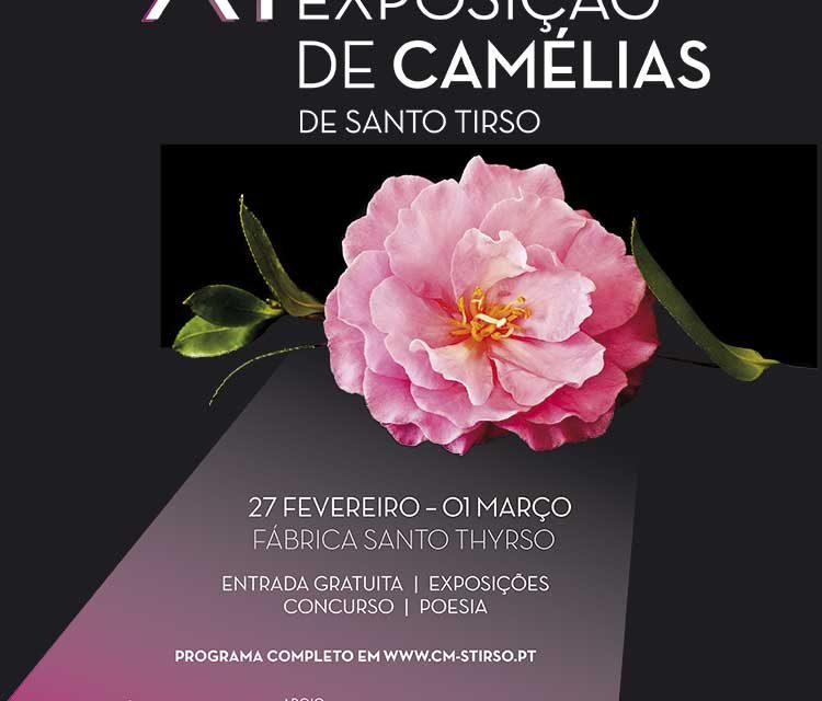 Santo Tirso acolhe exposição de camélias
