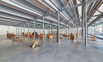Exposição de Alberto Carneiro na Fábrica de Santo Thyrso
