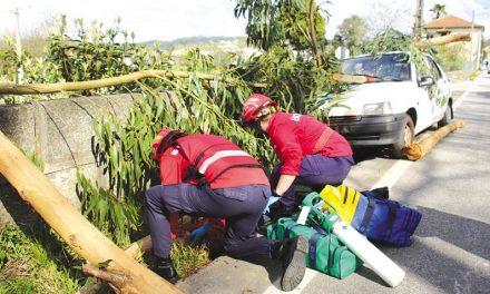 Mega simulacro testou Plano Municipal de Emergência