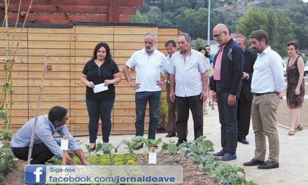 22 tirsenses já cultivam na Horta Urbana