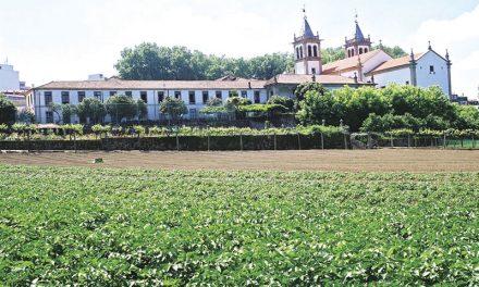 Escola Agrícola com vagas para cursos