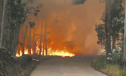Mais de 100 combateram incêndio da Ermida
