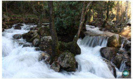 Santo Tirso investe meio milhão de euros no Parque Metropolitano de Monte Córdova