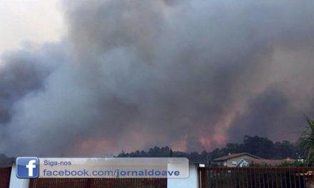 Chamas obrigaram a  evacuar três famílias em Santo Tirso