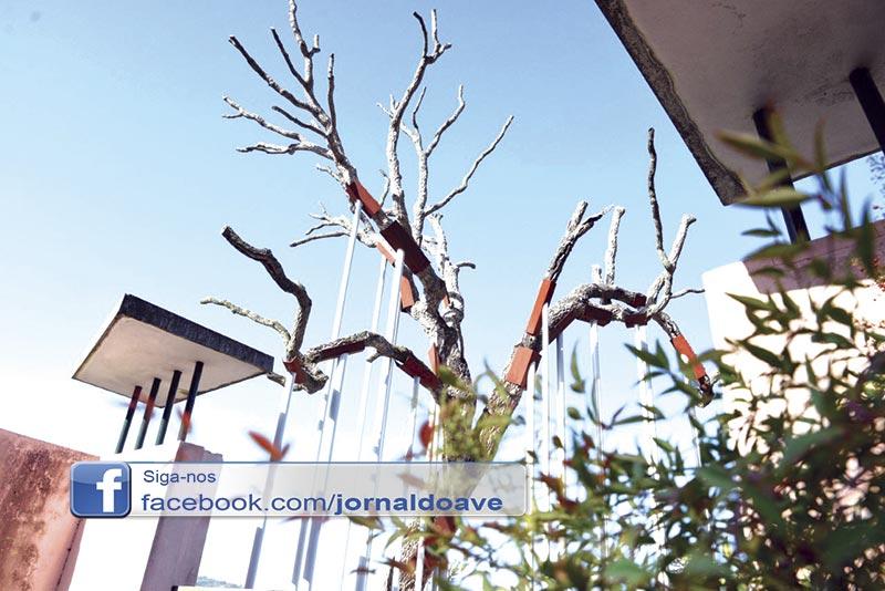 Árvore morta dá vida a escultura