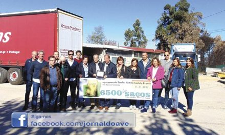 """Agrupamento de Escolas ajuda vítimas dos incêndios  com """"6500 sacos de cimento"""""""