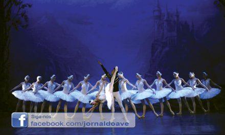 """Bailado """"O Lago dos Cisnes"""" na Casa das Artes"""