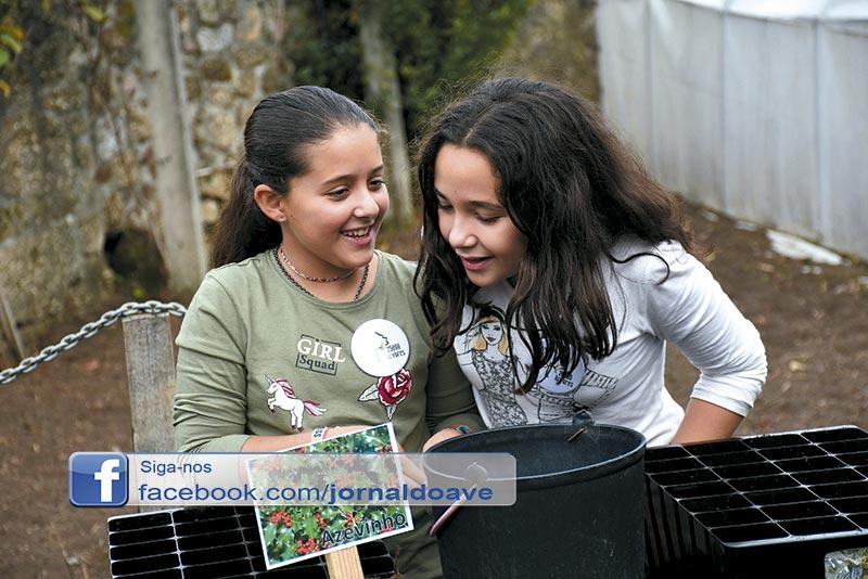 Inaugurado primeiro berçário de árvores eco-escolas