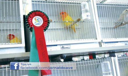 Recorde de expositores  no Campeonato Nacional de Ornitologia