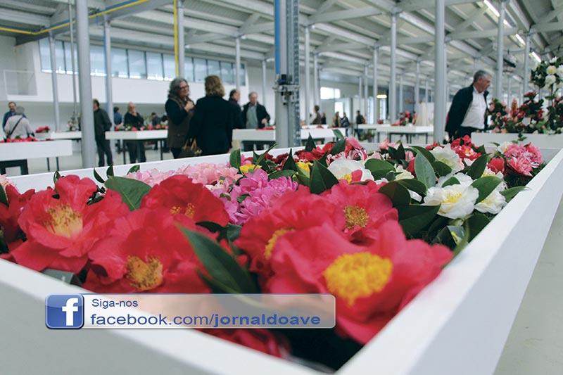"""""""Rosa do Japão"""" em exposição na Fábrica de Santo Thyrso"""