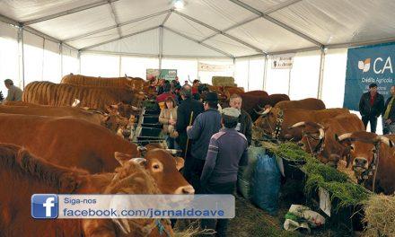 Produtores da agropecuária isentos de taxas municipais