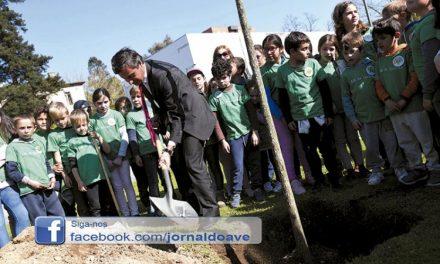 """Famalicão mais perto das """"25 mil árvores até 2025"""""""