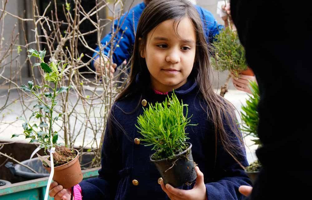 Famalicenses adotaram quase duas mil árvores autóctones