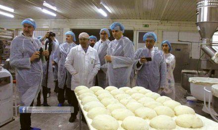 Pantir foi a primeira a reduzir o sal no pão (c/vídeo)