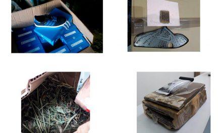 ASAE apreende 5900 doses de estupefacientes durante operação de combate à contrafação online