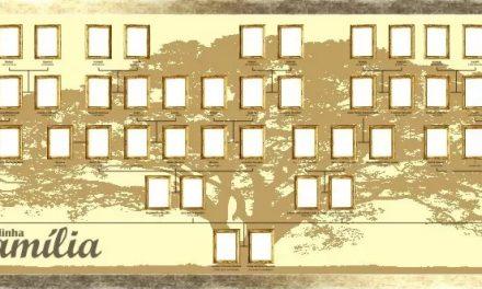 Atividades para descobrir as origens da família na Biblioteca Municipal