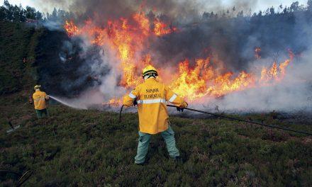 Câmara promove exercício com fogo controlado