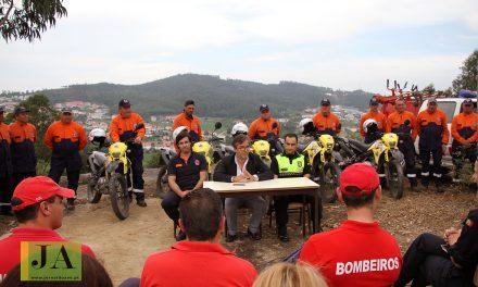 Autarquia limpou mais de 80 hectares de área florestal (c/ vídeo)