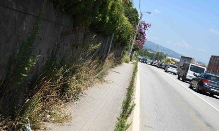 Câmara de Famalicão quer ver as bermas das estradas nacionais limpas