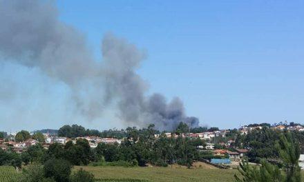 Um incêndio lavrou numa zona florestal junto da zona industrial de Lousado