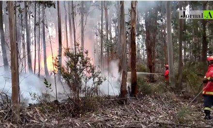 Incêndio no concelho de Santo Tirso combatido por 46 homens