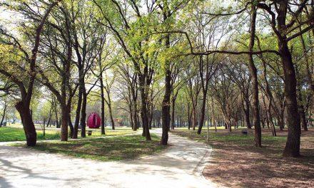 Educação em Festa no Parque Urbano