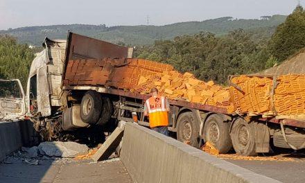 Camião despistou-se na A3 em Covelas