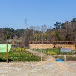 Formação sobre agricultura biológica na Fábrica de Santo Thyrso
