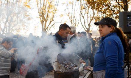 S.Martinho festeja-se na Praça dos Carvalhais