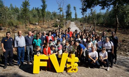 """Festival Famalicão Visão'25 debateu """"Comunidade do Futuro"""""""