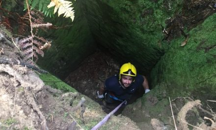 Bombeiros de Riba de Ave salvaram cão num poço