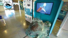 Mar-Plástico